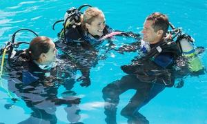 Gioia Dive: Corso di Scuba Diver o Scuba Wellness con l'associazione Gioia Dive (sconto fino a 90%)