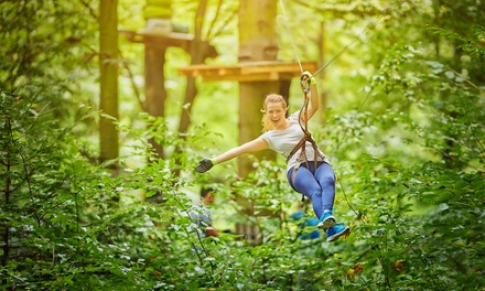 High Ropes Course and Zipline for Two, Four, or Six at The Frankenmuth Aerial Park (Up to 41% Off).