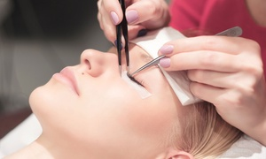 Up to 59% Off Mink Eyelash Extensions at Sumi Eyelash Inc at Sumi Eyelash Inc, plus 6.0% Cash Back from Ebates.