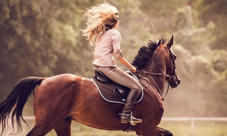 Paseo a caballo de 90 minutos para 2 o 4 personas desde 24,95 € en Centro Hípico Las Riendas Oferta en Groupon