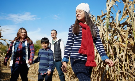 $21 for Family-Friendly Hayride and Corn Maze for Four at Westhaven Farm ($38 Value)