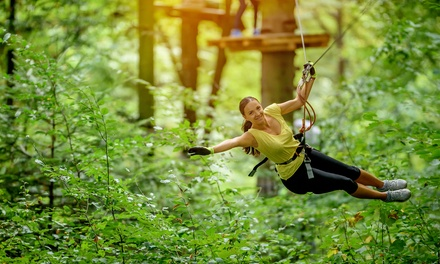 Aerial Park Experience for Two, Four, or Six at The Frankenmuth Aerial Park (Up to 50% Off)