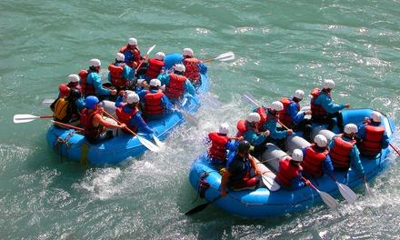 Soft rafting in battello sul fiume Adda per 2 o 4 persone con Indomita Valtellina River (sconto fino a 35%)