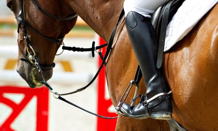 Century Farm Equestrian Center - Scio-Lacomb: One or Three 90-Minute Horseback-Riding Lessons at Century Farm Equestrian Center (Up to 50% Off)