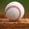Half Off Gary SouthShore RailCats Baseball Game
