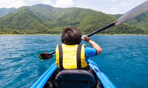 East Coast Adventure: Carlingford Lough Guided Kayaking Tour for One Two or Four with East Coast Adventure (Up to 48% Off)