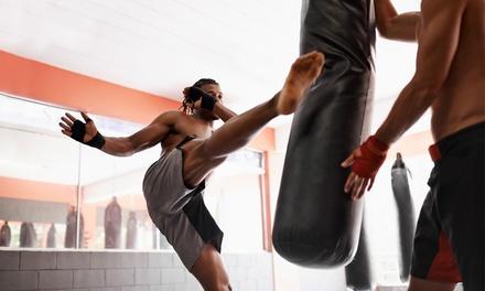 Buikslotermeer: 10 of 20 keer fitnessen en kickboksen bij Pancration in Amsterdam