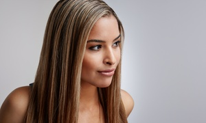 Halo Salon & Color Lab: Cut, Conditioning, and Style with Optional Partial or Full Highlights or Color at Hair Salon & Color Lab (Up to 76% Off)