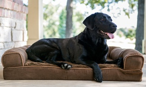 Clean Cut Grooming: Pet Grooming for One Small, Medium, or Large Dog at Clean Cut Grooming (Up to 47% Off)