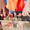63% Off at ABC Bartending School