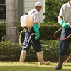 72% Pest and Mosquito Treatment from Prince Pest Pros