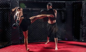 Up to 67% Off Kickboxing at Team Darrin Muay Thai Kickboxing