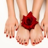 Up to 38% Off Mani-Pedi Services at Elle Beauty Bar and Spa