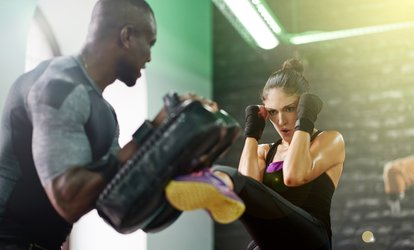 image for <strong>Kickboxing</strong> Classes at Raleigh Institute of Martial Arts (Up to 58% Off)