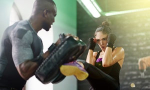 Up to 76% Off Kickboxing Classes at The Void Martial Arts at The Void Martial Arts, plus 6.0% Cash Back from Ebates.