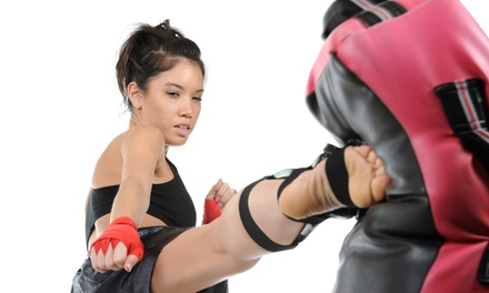 5 or 10 Kickboxing Sessions with Kickboxing Gloves at United States Karate Academy (Up to 80% Off)