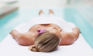 Enotto Massage Therapy: 30-Minute Head, Neck and Shoulder Massage or 50-minute Swedish Body Massage at Enotto Massage Therapy (Up to 74% Off)