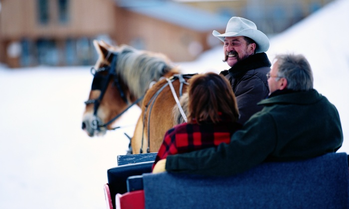 Bright Morning Horseback Riding LLC - Lost Mountain: One-Horse Open Sleigh or Carriage Ride for Two from Bright Morning Horseback Riding LLC (33%Off)