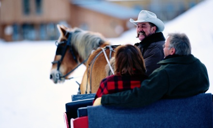 One-Horse Open Sleigh or Carriage Ride for Two from Bright Morning Horseback Riding LLC (33% Off)