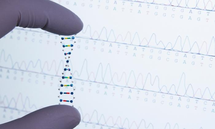 Click Salud - Fuengirola: Test de intolerancias alimenticias y/o de ADN para ayudar a adelgazar desde 34,95 € con Click Salud