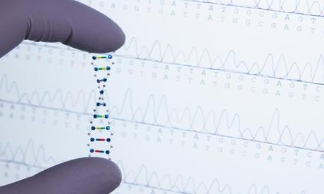 Test de intolerancias alimenticias y/o de ADN para ayudar a adelgazar desde 34,95 € con Click Salud