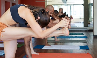image for 10 or 20 <strong>Yoga</strong> or Fitness Classes at Accelerate Fit Life (Up to 81% Off)