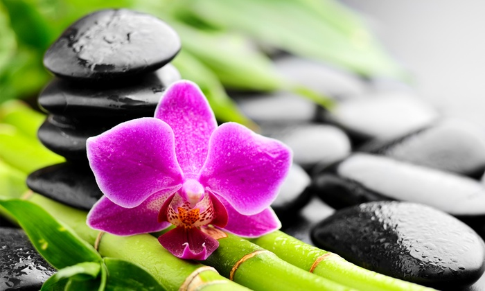 Mobili Da Giardino Casal Palocco : Yoga o tai chi chuan a casal palocco centro yoga tai chi casal