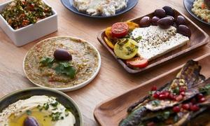 Falafel Shami: Midden-Oosten menu vanaf € 14,99 voor 2 of 4 personen