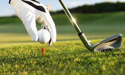 One-Hour Group Golf Lesson for a Child or Adult at Golf Lessons With Charlie Pillinger (50% Off)