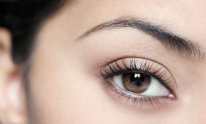 LVL Lashes with Tint at Sunset Boulevard (52% Off)