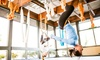 Up to 29% Off Aerial Classes at Elite Fitness Training Studio