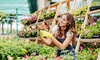 Kurs online: ogrodniczy