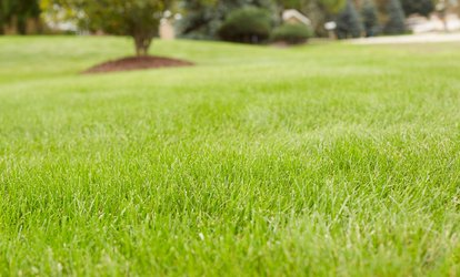 Up to 61% Off Lawn Care Services from Weed Man