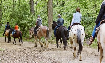 Paseo a caballo con clase, sesión de relajación y refresco para 2 o 4 personas desde 24,90 € en Finca Paraíso