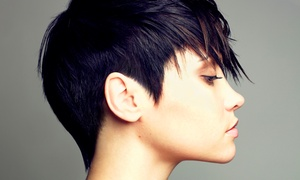 Signature One Salon: Haircut, Style, and Blow-Dry with Optional Single-Process Color at Signature One Salon (Up to 52% Off)