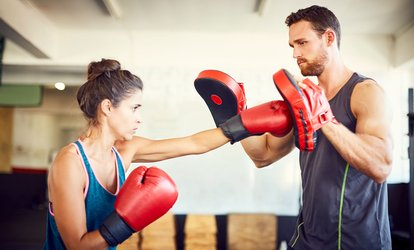 image for Five or Ten One-Hour Muay Thai Boot Camp Classes at Fitter Than Fit Muay Thai Boot Camp (Up to 42% Off)