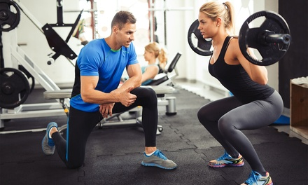 Curso online de monitor de musculación con opción a HITTy entrenamiento en suspensión desde 9,95 € en Instituto IDIP