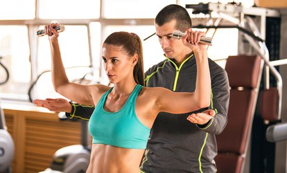 Up to Ten High Intensity Personal Training or Fitt Group Personal Transformation Programs at Fitt Pro (Up to 77% Off)