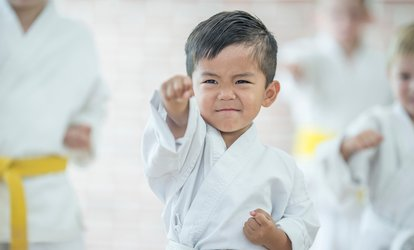 image for One Month of Kids' or Adults' <strong>Martial Arts</strong> Classes at North Orange County <strong>Martial Arts</strong> (Up to 73% Off)