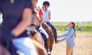 Manege O Charlie: Cours d'initiation à l'équitation et boisson chez Manege O Charlie à Beveren