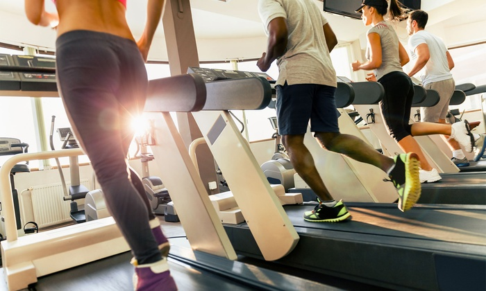 fitness lovers 305 from 41 miami fl groupon