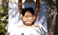 Up to Three Holistic Treatments at Valley Holistics (Up to 57% Off)