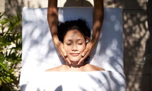 One 60- or 90-Minute Massage at Harmony's Healing Tree (Up to 56% Off)