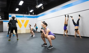 Apex Fitness: Fitness Instructor, Personal Trainer or Personal Trainer Plus Course at Apex Fitness (30% Off)