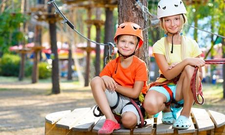 Menú y entrada al circuito de aventura familiar o infantil para 1, 2, 3 o 4 personas desde 9,95 € en Torrelino Aventura