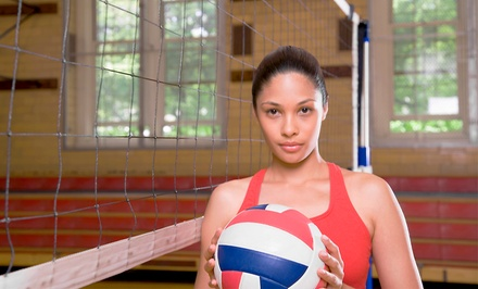 Admission for Two or Four to the International Volleyball Hall of Fame (Up to 57% Off)