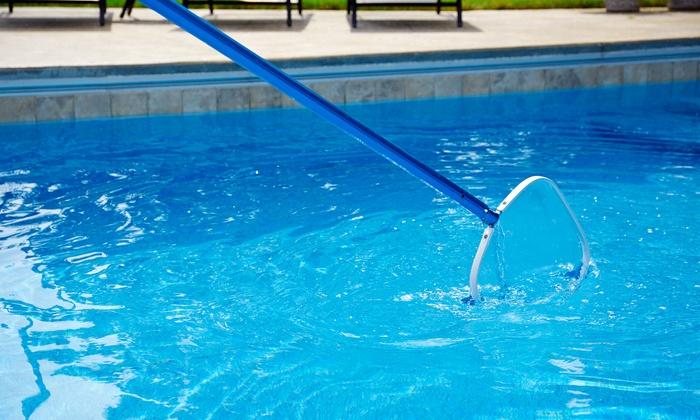 entretien de piscine sud net piscine groupon. Black Bedroom Furniture Sets. Home Design Ideas