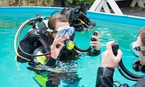 Deepbusters Centrum Nurkowe: Kurs nurkowania INTRO od 79,99 zł w Centrum Nurkowym Deepbusters w Gdyni