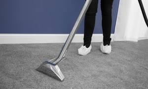 Mascot Laundry: Up to 15 Sq. Metres of Carpet Cleaning from Mascot Laundry (Up to 47% Off)