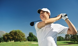 Up to 51% Off Range Balls at Okemos Golf Range at Okemos Golf Range, plus 6.0% Cash Back from Ebates.